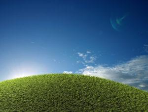 stockvault-green-field98238